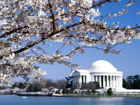 1386171094jefferson-memorial-washington-dcjpg.jpg